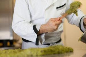 trucchi per decorare al pistacchio